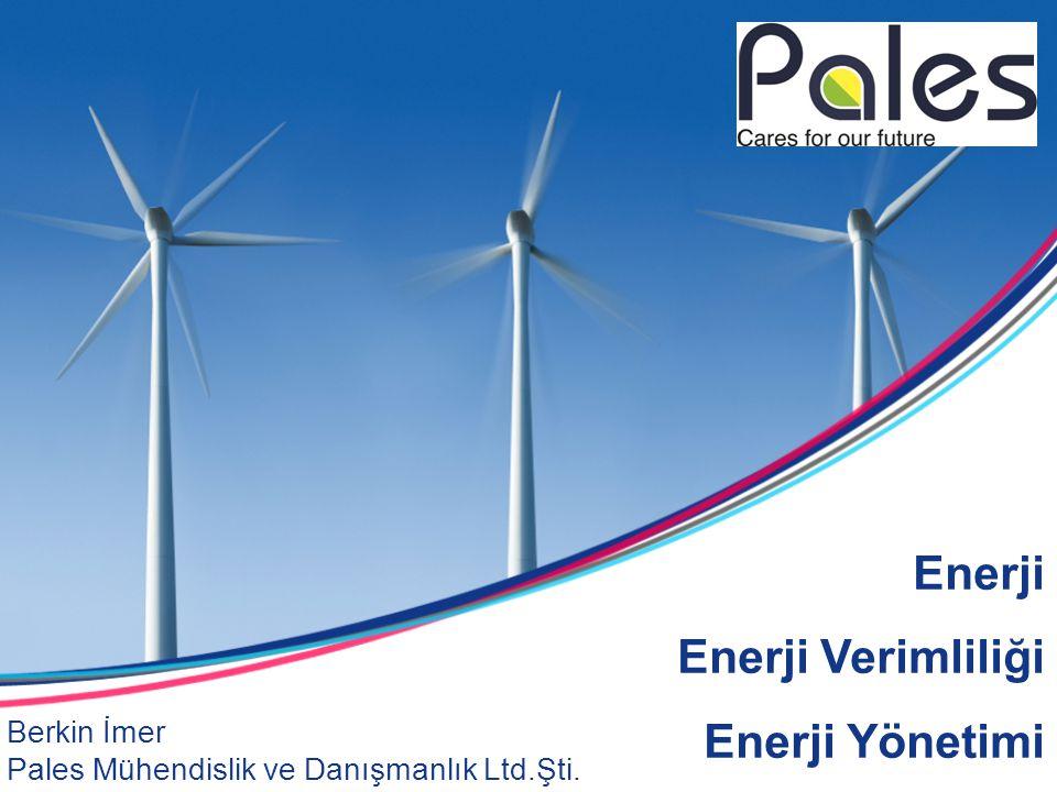 Enerji Enerji Verimliliği Enerji Yönetimi