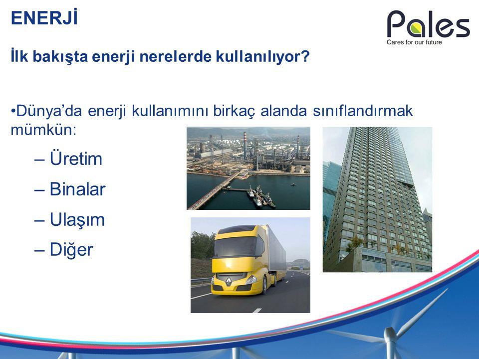 ENERJİ Üretim Binalar Ulaşım Diğer
