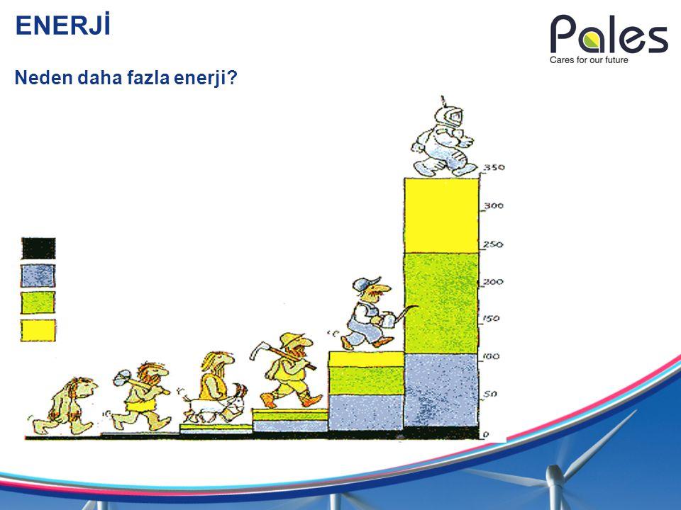 ENERJİ Neden daha fazla enerji