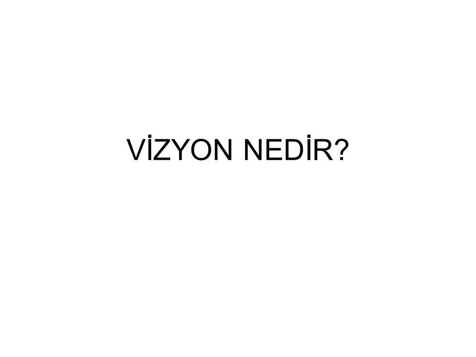 VİZYON NEDİR