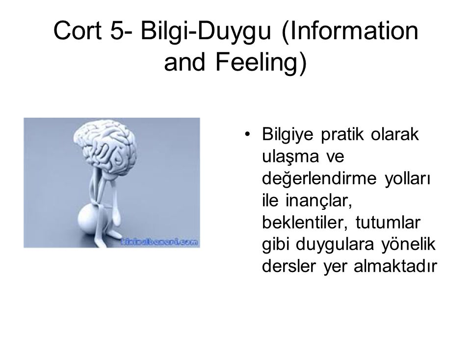 Cort 5- Bilgi-Duygu (Information and Feeling)