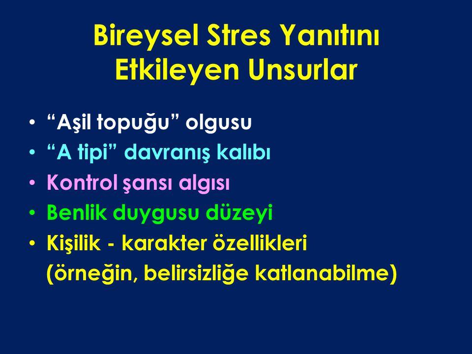 Bireysel Stres Yanıtını Etkileyen Unsurlar