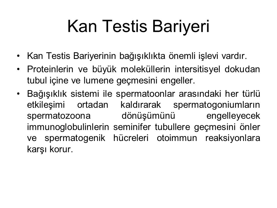 Kan Testis Bariyeri Kan Testis Bariyerinin bağışıklıkta önemli işlevi vardır.