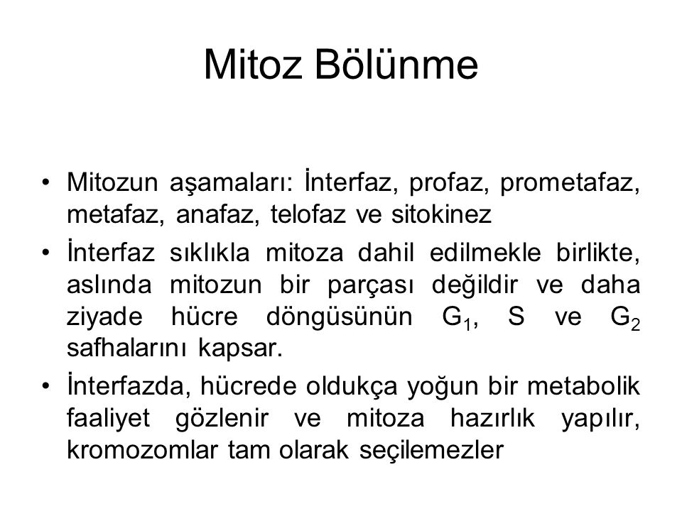 Mitoz Bölünme Mitozun aşamaları: İnterfaz, profaz, prometafaz, metafaz, anafaz, telofaz ve sitokinez.