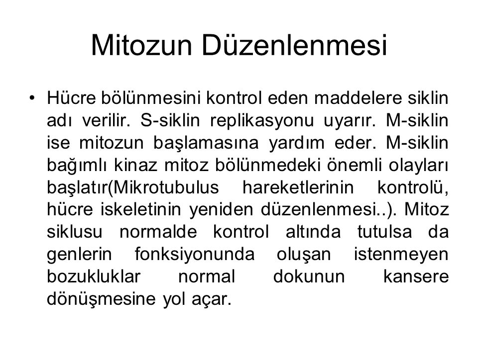 Mitozun Düzenlenmesi