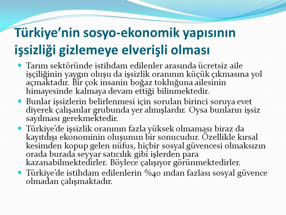 Türkiye'nin sosyo-ekonomik yapısının işsizliği gizlemeye elverişli olması