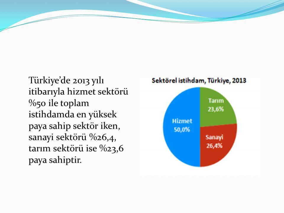 Türkiye'de 2013 yılı itibarıyla hizmet sektörü %50 ile toplam istihdamda en yüksek paya sahip sektör iken, sanayi sektörü %26,4, tarım sektörü ise %23,6 paya sahiptir.
