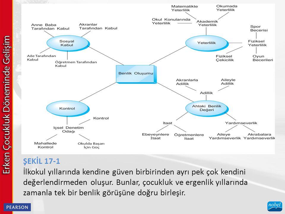 ŞEKİL 17-1