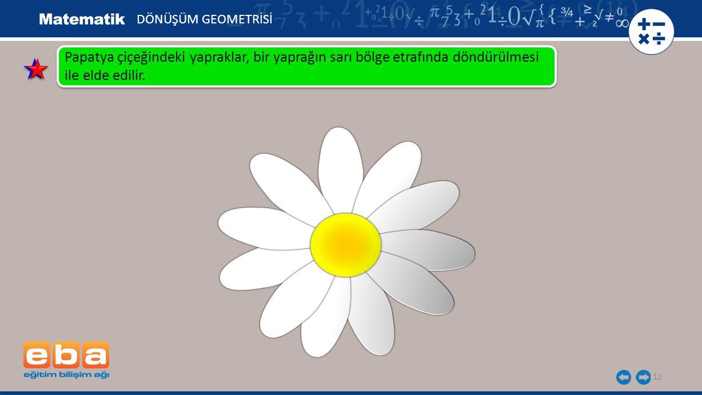 DÖNÜŞÜM GEOMETRİSİ Papatya çiçeğindeki yapraklar, bir yaprağın sarı bölge etrafında döndürülmesi ile elde edilir.