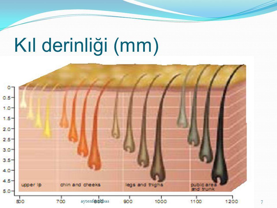 Kıl derinliği (mm) aytenferahbas Ferahbas