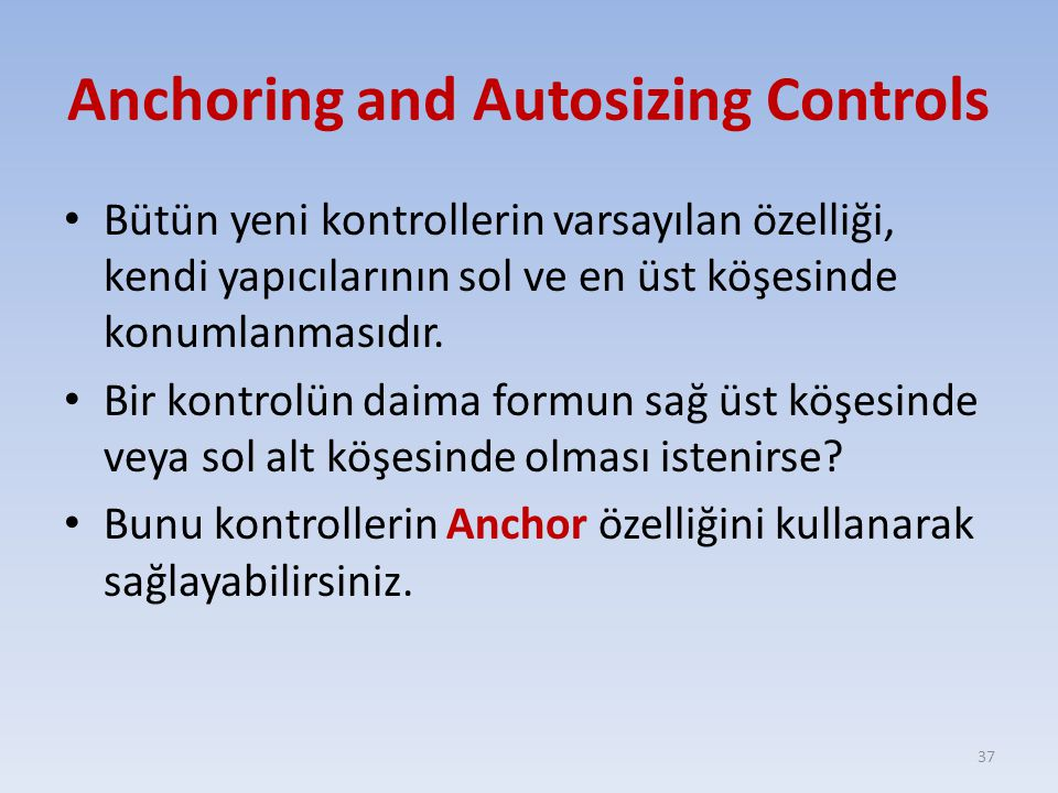 Anchoring and Autosizing Controls