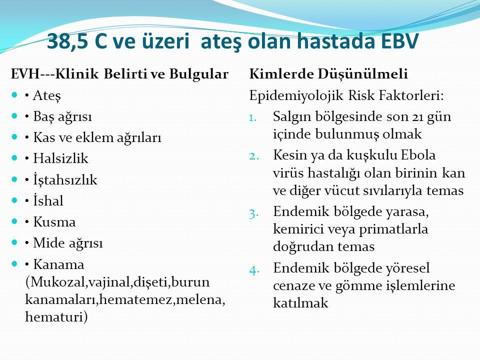 38,5 C ve üzeri ateş olan hastada EBV