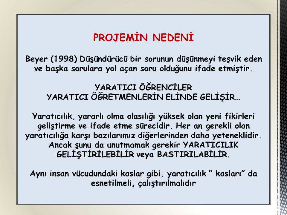 PROJEMİN NEDENİ Beyer (1998) Düşündürücü bir sorunun düşünmeyi teşvik eden ve başka sorulara yol açan soru olduğunu ifade etmiştir.