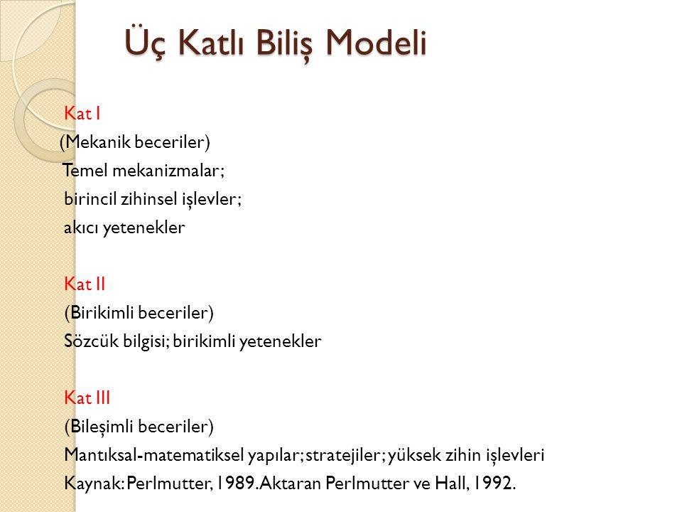 Üç Katlı Biliş Modeli