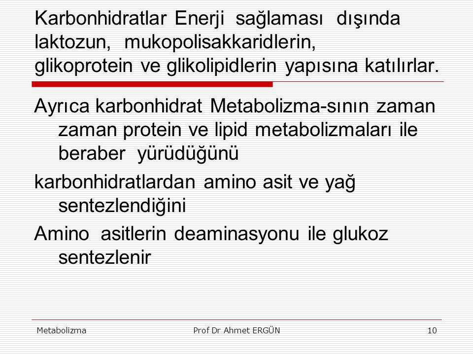 karbonhidratlardan amino asit ve yağ sentezlendiğini