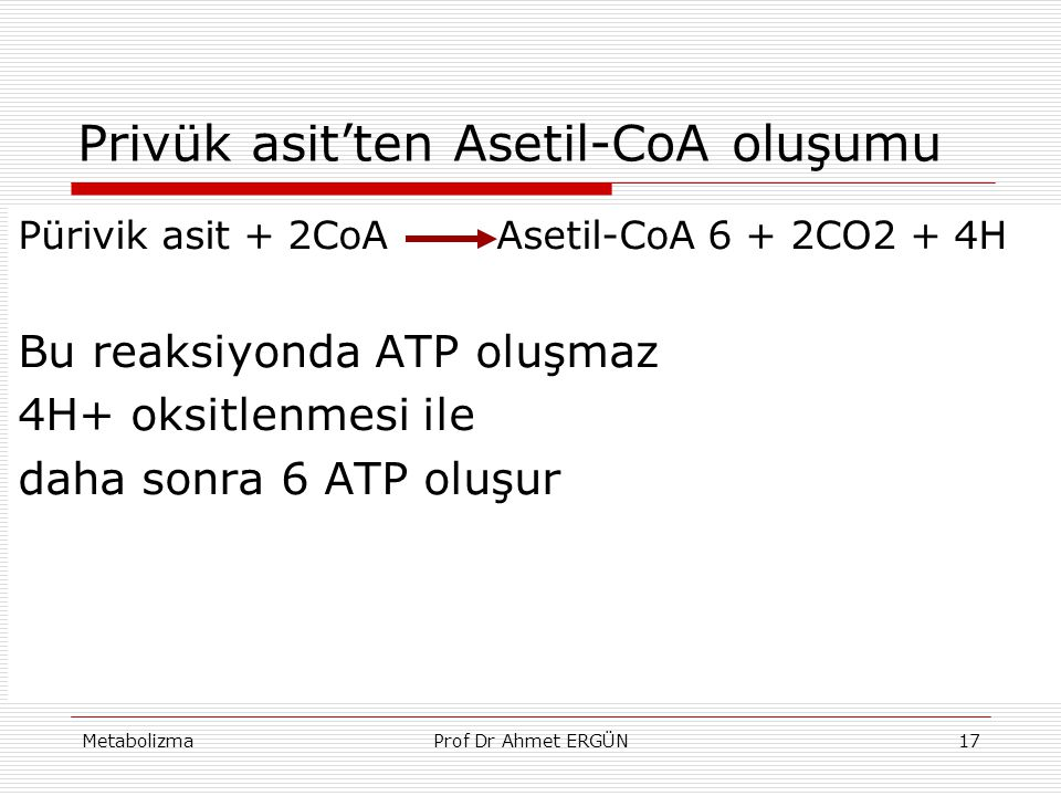 Privük asit'ten Asetil-CoA oluşumu