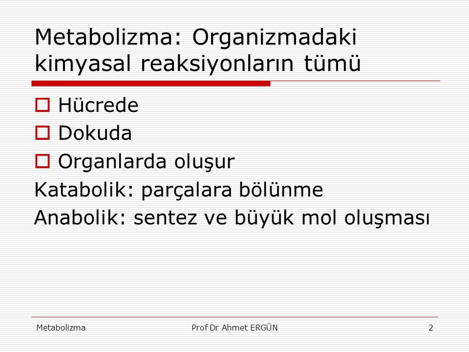 Metabolizma: Organizmadaki kimyasal reaksiyonların tümü