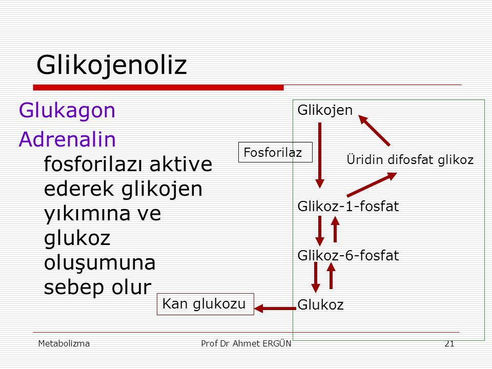 Glikojenoliz Glukagon