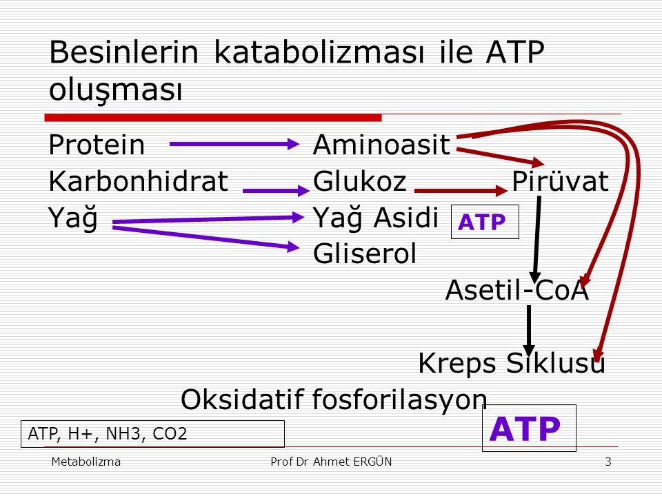 Besinlerin katabolizması ile ATP oluşması