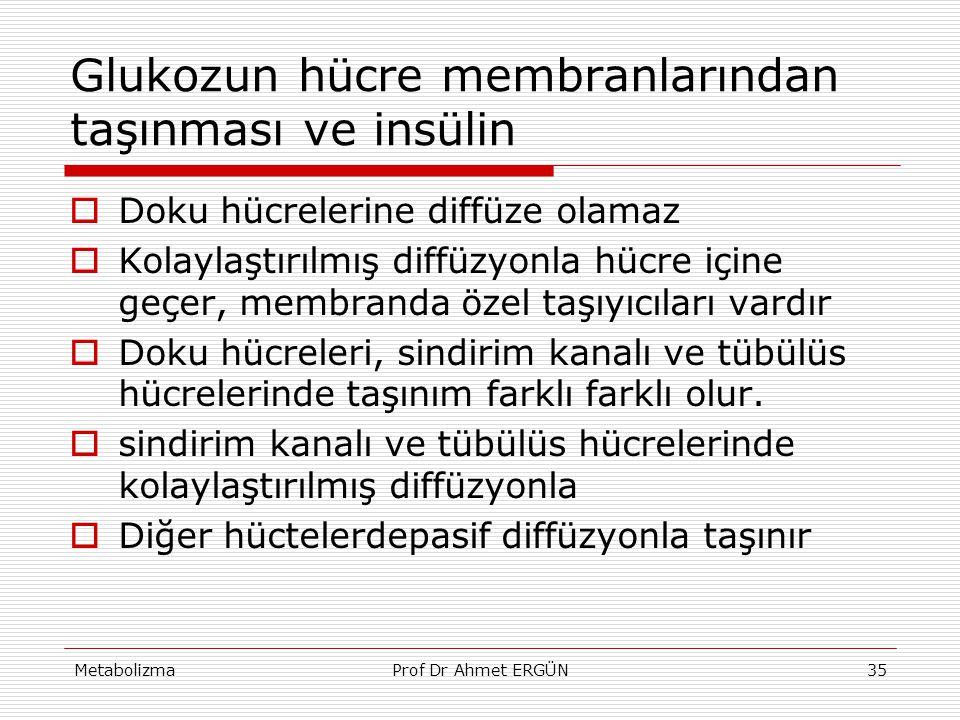 Glukozun hücre membranlarından taşınması ve insülin