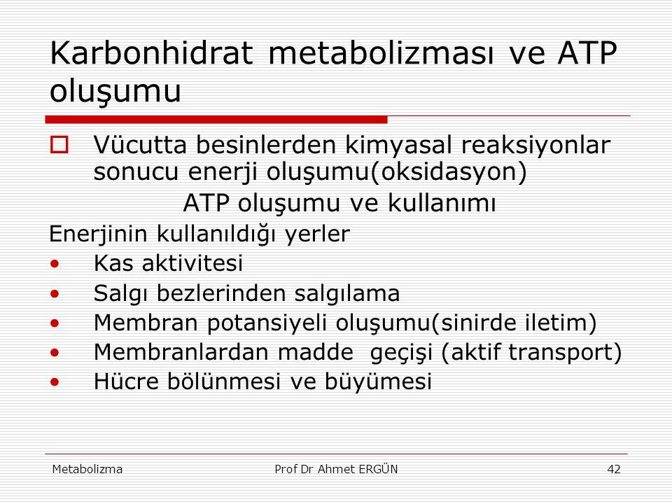 Karbonhidrat metabolizması ve ATP oluşumu