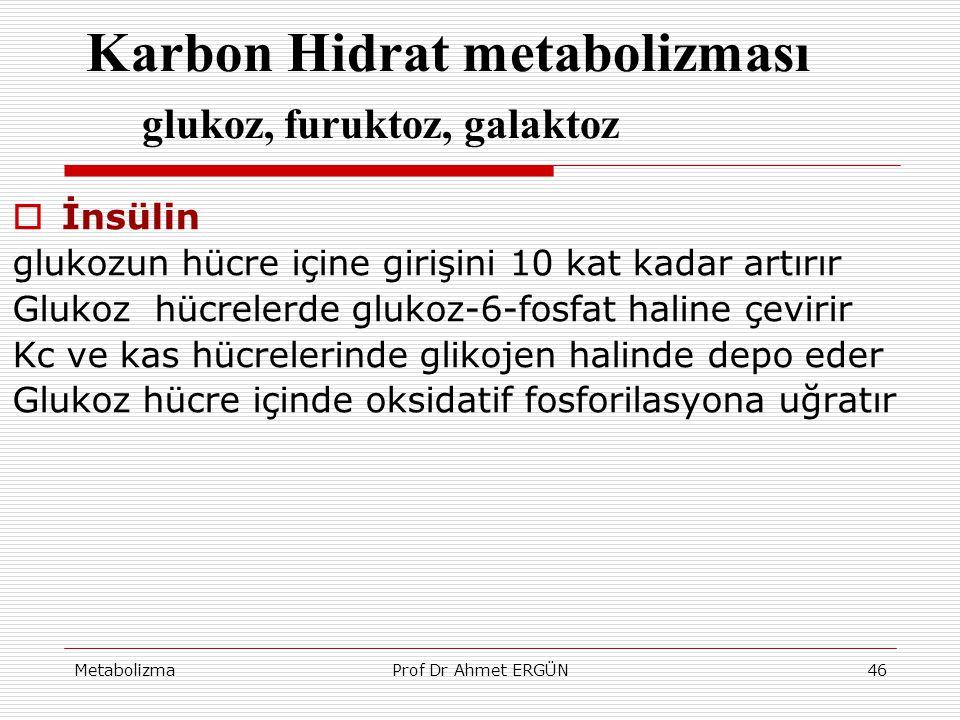 Karbon Hidrat metabolizması glukoz, furuktoz, galaktoz
