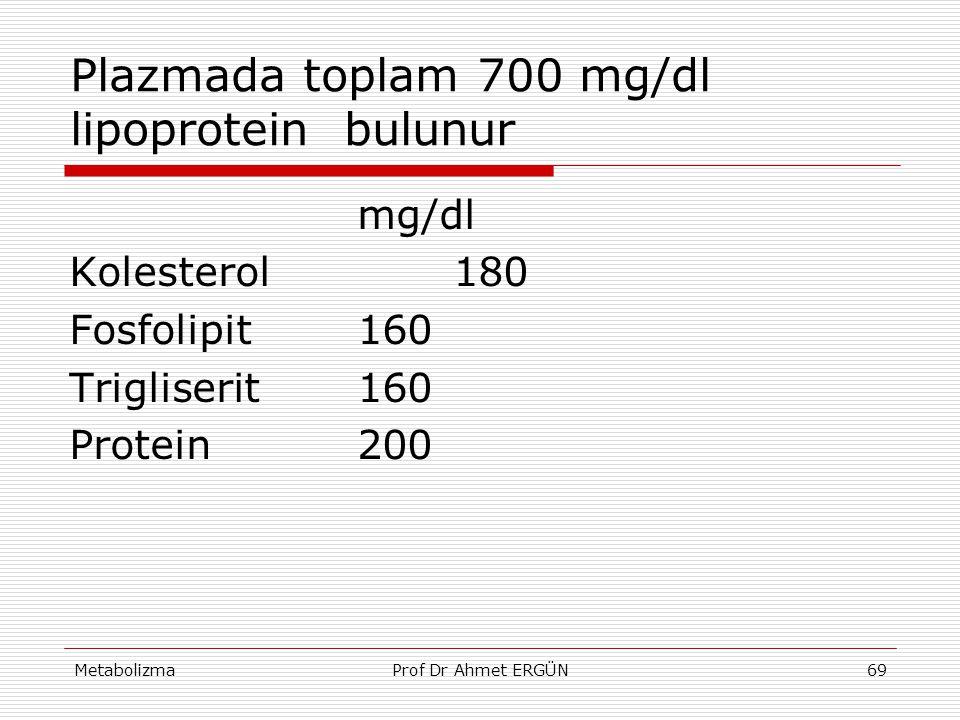 Plazmada toplam 700 mg/dl lipoprotein bulunur