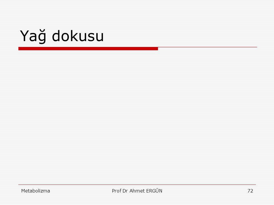 Yağ dokusu Metabolizma Prof Dr Ahmet ERGÜN