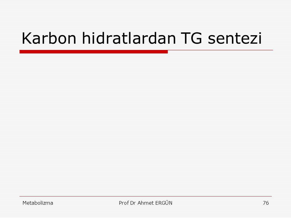 Karbon hidratlardan TG sentezi