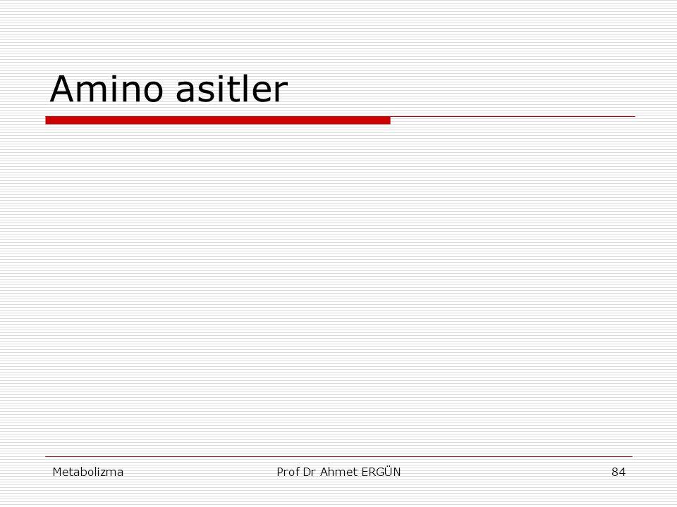Amino asitler Metabolizma Prof Dr Ahmet ERGÜN