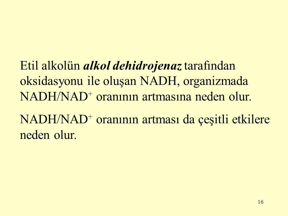 Etil alkolün alkol dehidrojenaz tarafından oksidasyonu ile oluşan NADH, organizmada NADH/NAD+ oranının artmasına neden olur.