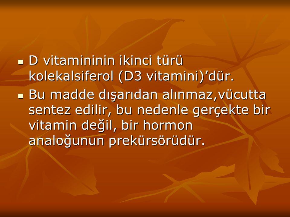 D vitamininin ikinci türü kolekalsiferol (D3 vitamini)'dür.