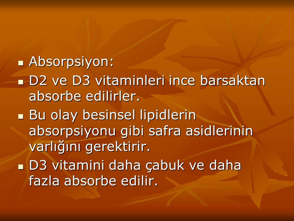 Absorpsiyon: D2 ve D3 vitaminleri ince barsaktan absorbe edilirler.