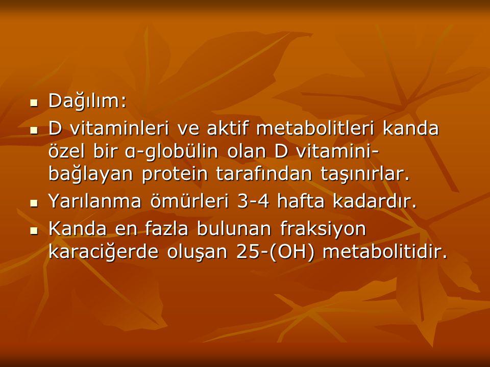 Dağılım: D vitaminleri ve aktif metabolitleri kanda özel bir α-globülin olan D vitamini-bağlayan protein tarafından taşınırlar.