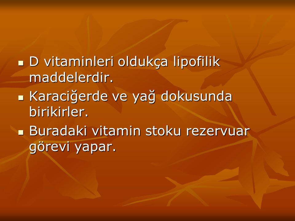 D vitaminleri oldukça lipofilik maddelerdir.