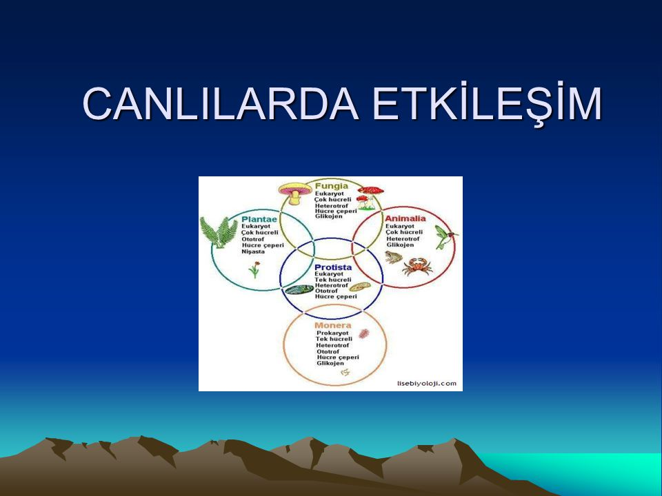 CANLILARDA ETKİLEŞİM