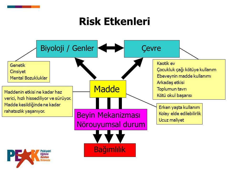 Risk Etkenleri Madde Biyoloji / Genler Çevre Beyin Mekanizması
