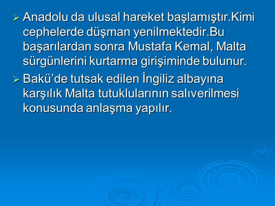 Anadolu da ulusal hareket başlamıştır