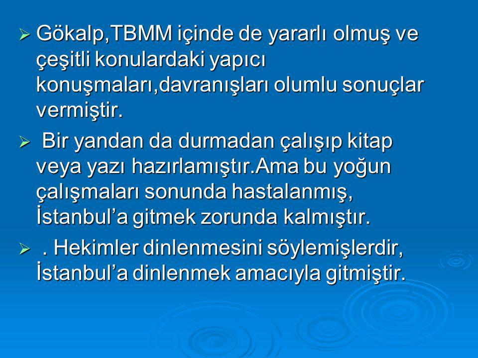 Gökalp,TBMM içinde de yararlı olmuş ve çeşitli konulardaki yapıcı konuşmaları,davranışları olumlu sonuçlar vermiştir.