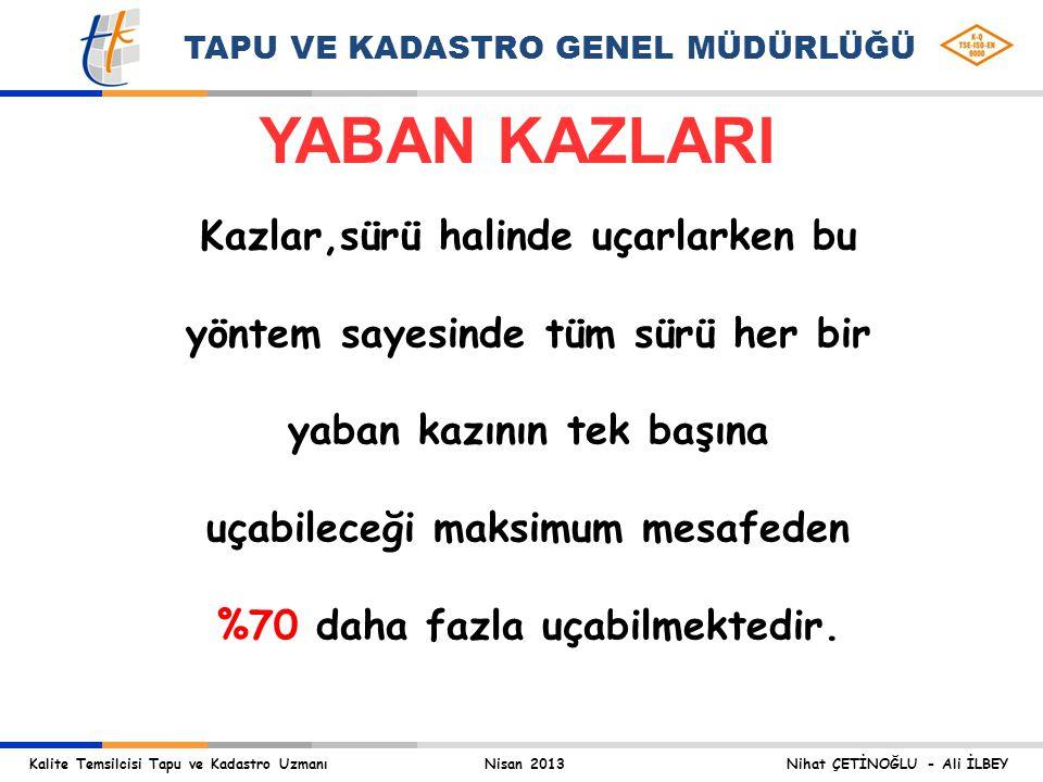 YABAN KAZLARI