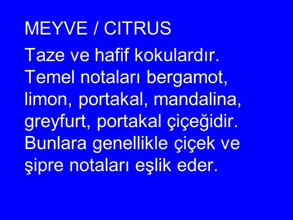 MEYVE / CITRUS