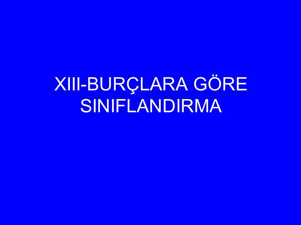 XIII-BURÇLARA GÖRE SINIFLANDIRMA