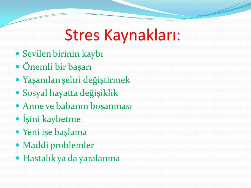 Stres Kaynakları: Sevilen birinin kaybı Önemli bir başarı