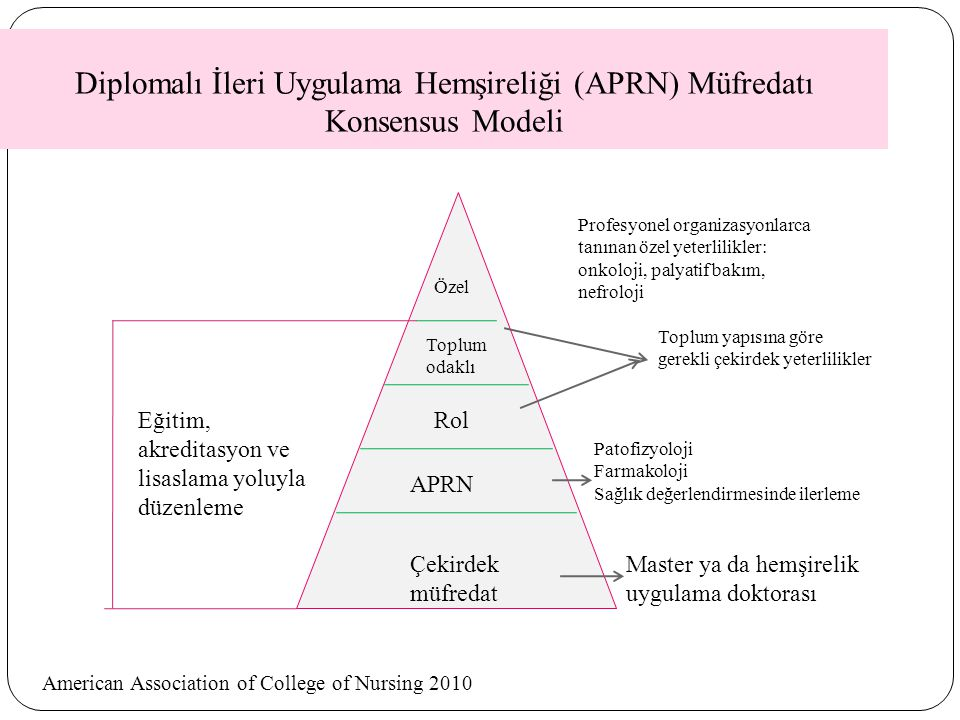 Diplomalı İleri Uygulama Hemşireliği (APRN) Müfredatı Konsensus Modeli
