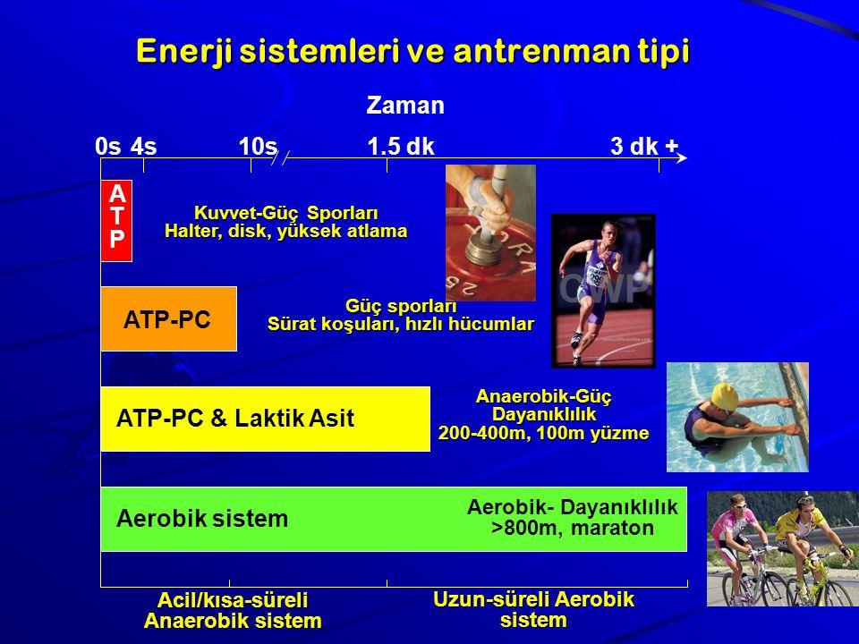 Enerji sistemleri ve antrenman tipi