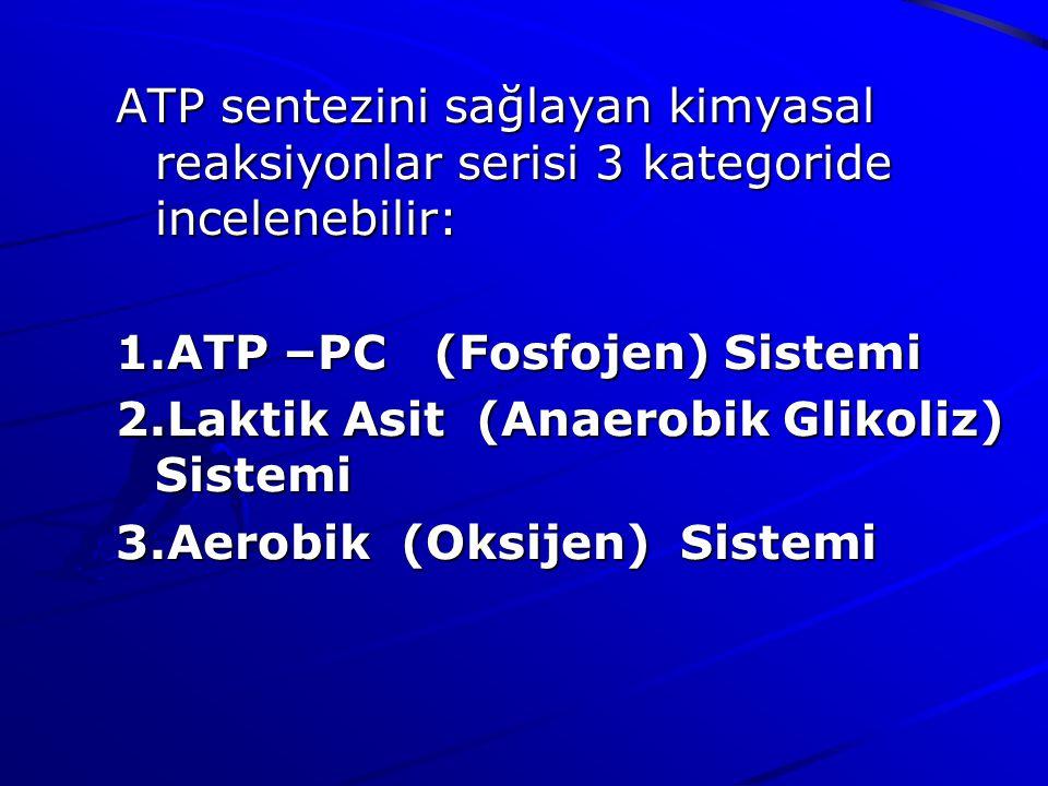 ATP sentezini sağlayan kimyasal reaksiyonlar serisi 3 kategoride incelenebilir: