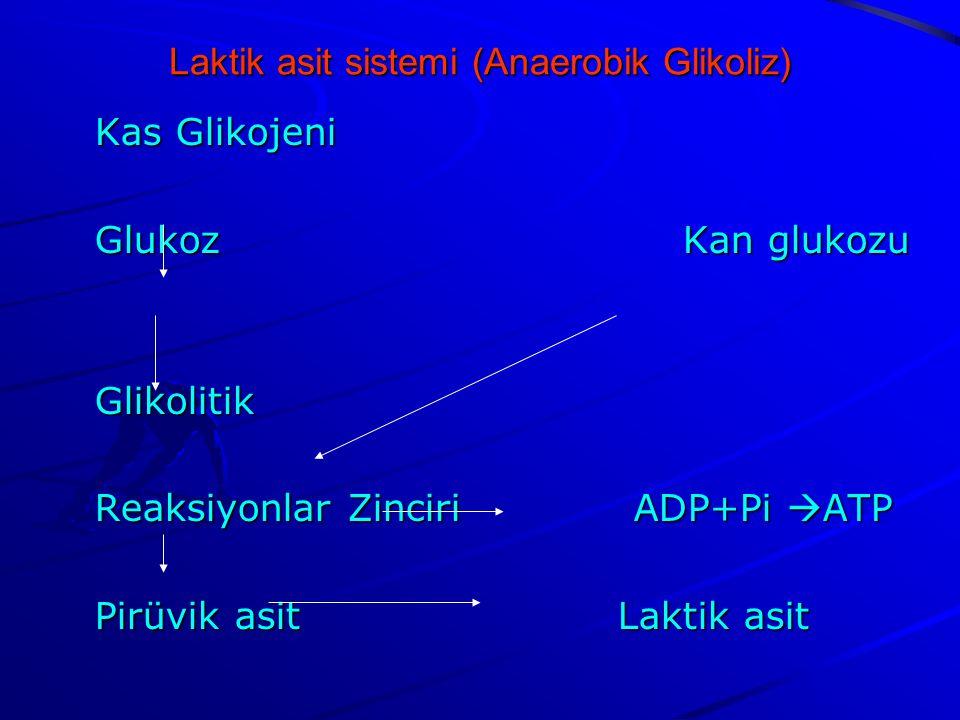 Laktik asit sistemi (Anaerobik Glikoliz)
