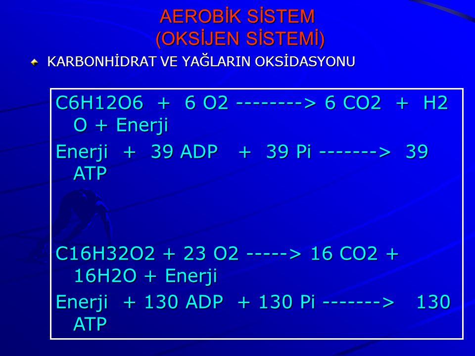 AEROBİK SİSTEM (OKSİJEN SİSTEMİ)