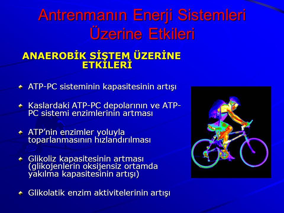 Antrenmanın Enerji Sistemleri Üzerine Etkileri