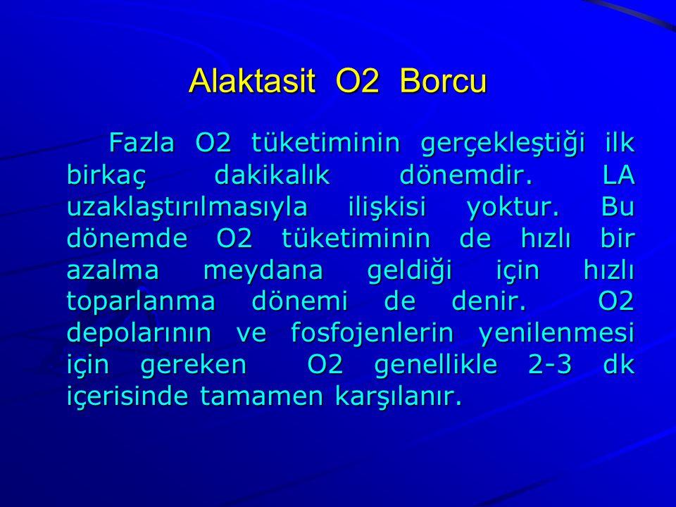 Alaktasit O2 Borcu